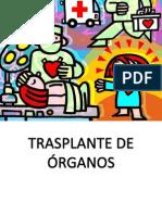 Expo Trasplantes de Organos