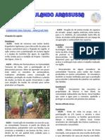 Circulando Arassussa - Ano 6 - nº 116.pdf