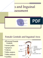 Genitals and Inguinal Assessment-Female