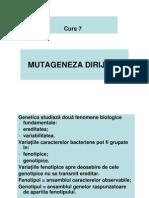 Curs - Mutageneza Dirijata