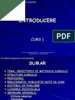 IMA Curs1-2012