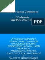 Vuelo de GANSO v1
