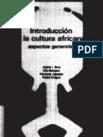 Introducción a la cultura africana, aspectos generales