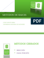 metodosderaices-100607215051-phpapp01