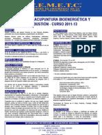 Experto en Acupuntura Bioenergetica y Moxibustion.pdf