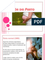 7 b ATENCION DEL PARTO.ppt