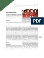 Shark Skin Drag Reduction.pdf