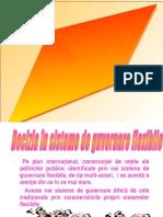 Cursul 6 Decizia in Structurile Flexibile