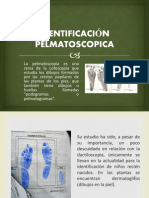 Pelmatoscopia Expo