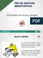 programa salud laboral cga