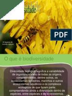 (3) Biodiversidade_-_Ecologia