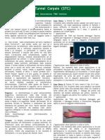 11.La Sindrome del Tunnel Carpale (STC)[1].pdf
