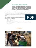 Proyectos Para El Cuidado Del Medio Ambiente.