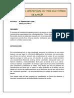 INVESTIGACIÓN DIFERENCIAL DE TRES CULTIVARES DE SANDÍA