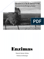 07enzimasppt-121219053637-phpapp01