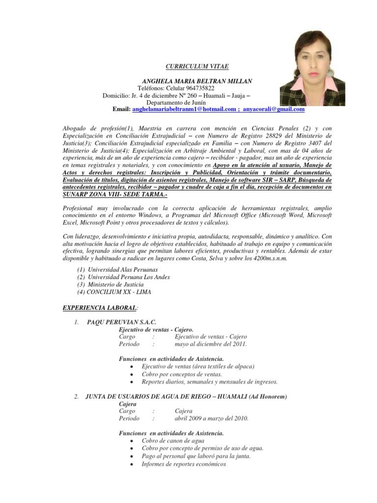 Curriculum Vitae Sunarp