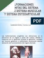 MALFORMACIONES CONGENITAS DEL SISTEMA NERVIOSO, MUSCULAR Y OSTEOARTICULAR.pptx