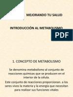 introducción metabolismo