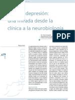 Neurobiologia del Estrés y depresión.pdf