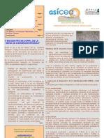 Boletín AsíCEA Marzo 2009