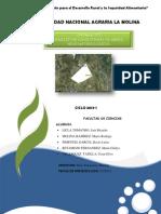 Analisiis de Consistencia1