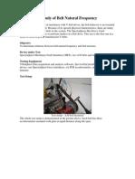 belt-study1.pdf