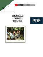 INFORME DIAGNOSTICO TECNICO
