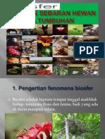 Biosfer Aspek Sebaran Hewan Tumbuhan