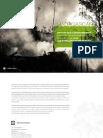 Rapport sur l'Environnement (Country Environnemental Analysis - CEA) 2013