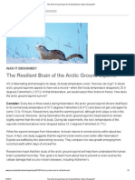 The Arctic Ground Squirrel's resilient Brain _ Was It Designed_
