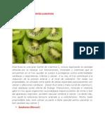 Los 12 Mejores Alimentos Curativos Doc