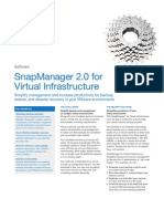 DS 2741 Snap  Manager Virtual Infrastructures