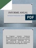 Informe Anual IPA (1)
