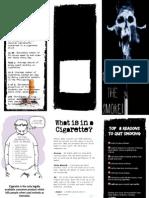 EnviFinal.pdf