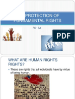 2012protection of Fundamental Rights