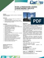Optimización-de-la-Producción-usando-el-Simulador-Pipesim-y-Wellflo