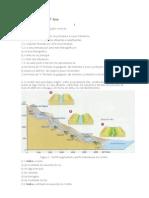 Exercícios para o 7ºAno barragens geografia