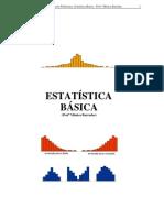 Estatistica Basica.docx