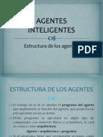 Estructura de Los Agentes