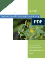 BW Strategic Road Map FINAL