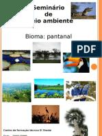 Pantanal Matogrossense - Seminario