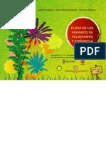 Flora de Los Paramos de Pacaipampa y Espindola