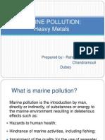 POLLUTION (Heavy Metals)