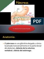 Pancreas Hormonas
