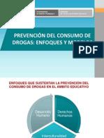 Marco Teorico de Prevencion Del Consumo de Drogas Enfoques y Modelos Modelo Ecologico