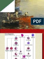Anemias y Leucemias