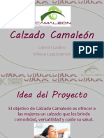 Calzado Camaleón Blogg.pptx