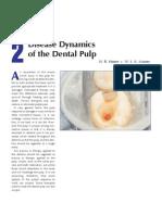 2 Disease Dynamic of Dental Pulp