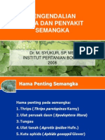 HPSP 09 YUMKMI 5 HamaPenyakit Semangka