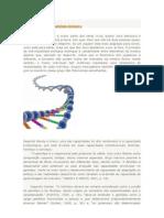 pRINCÍPIOS BIOLOGICOS DO FUTEBOL.docx